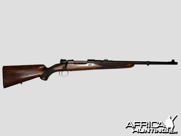 the 20th centurys top rifle