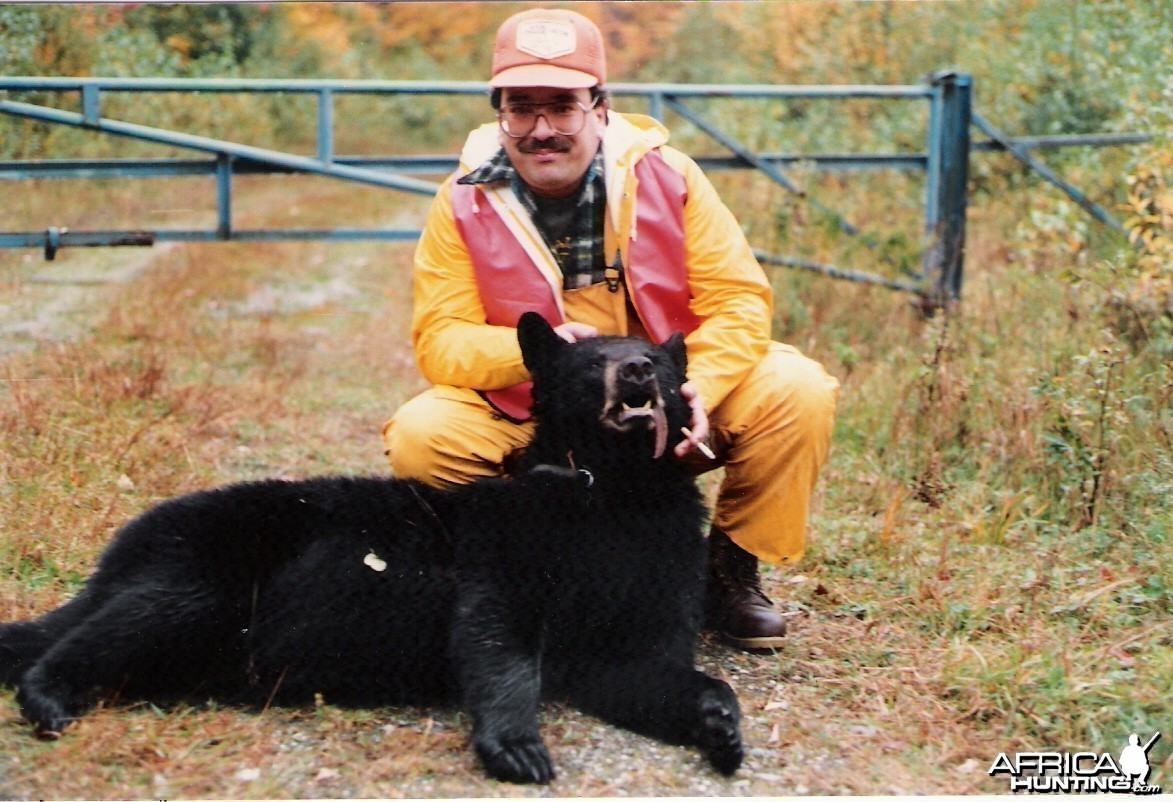 Bear hunted in Canada