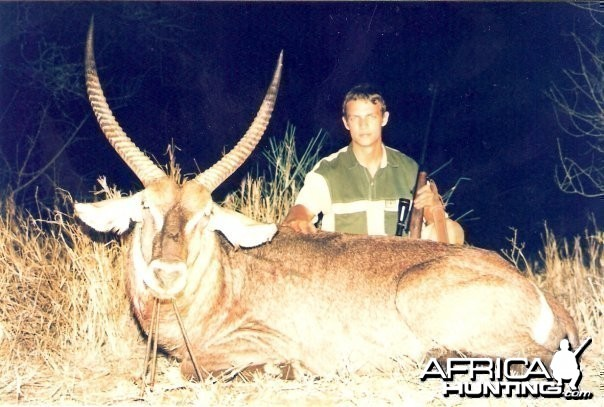 28.5 inch Common Waterbuck