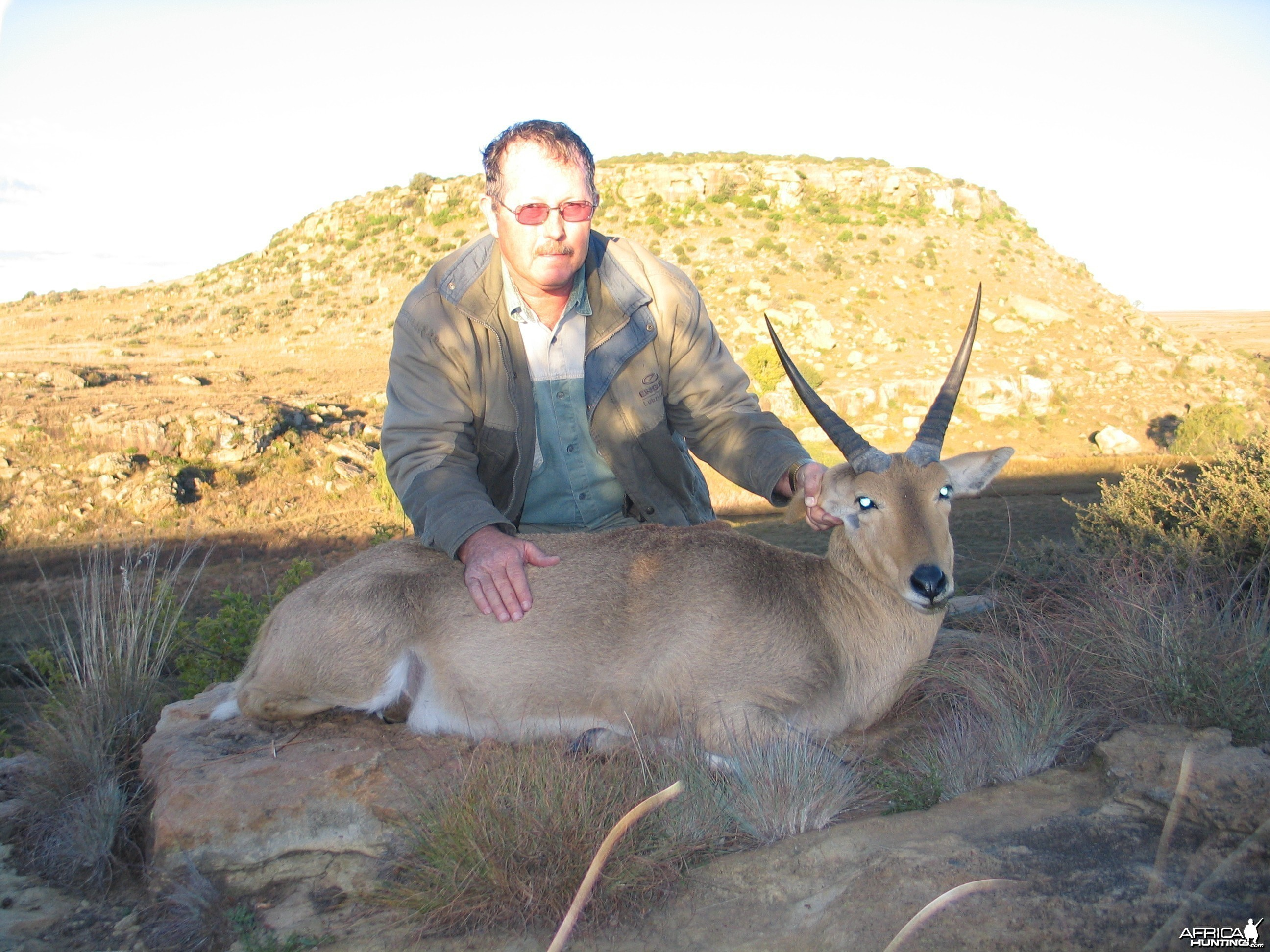 Common Reedbuck, Hunting with Clients