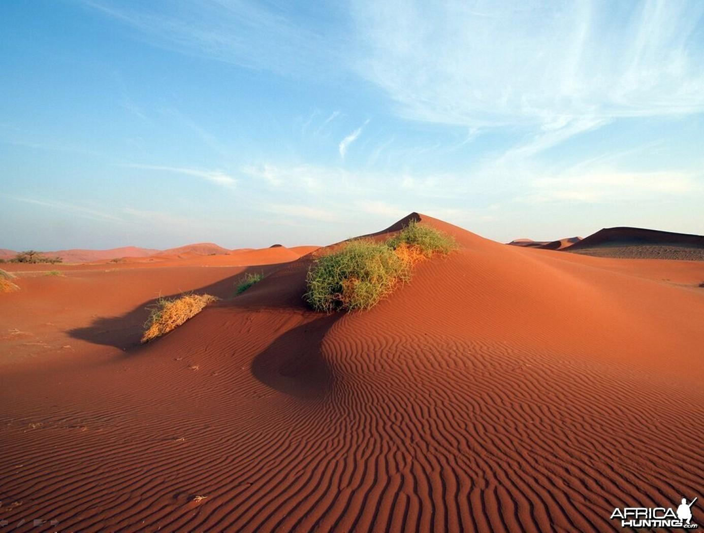 African landscape Dunes