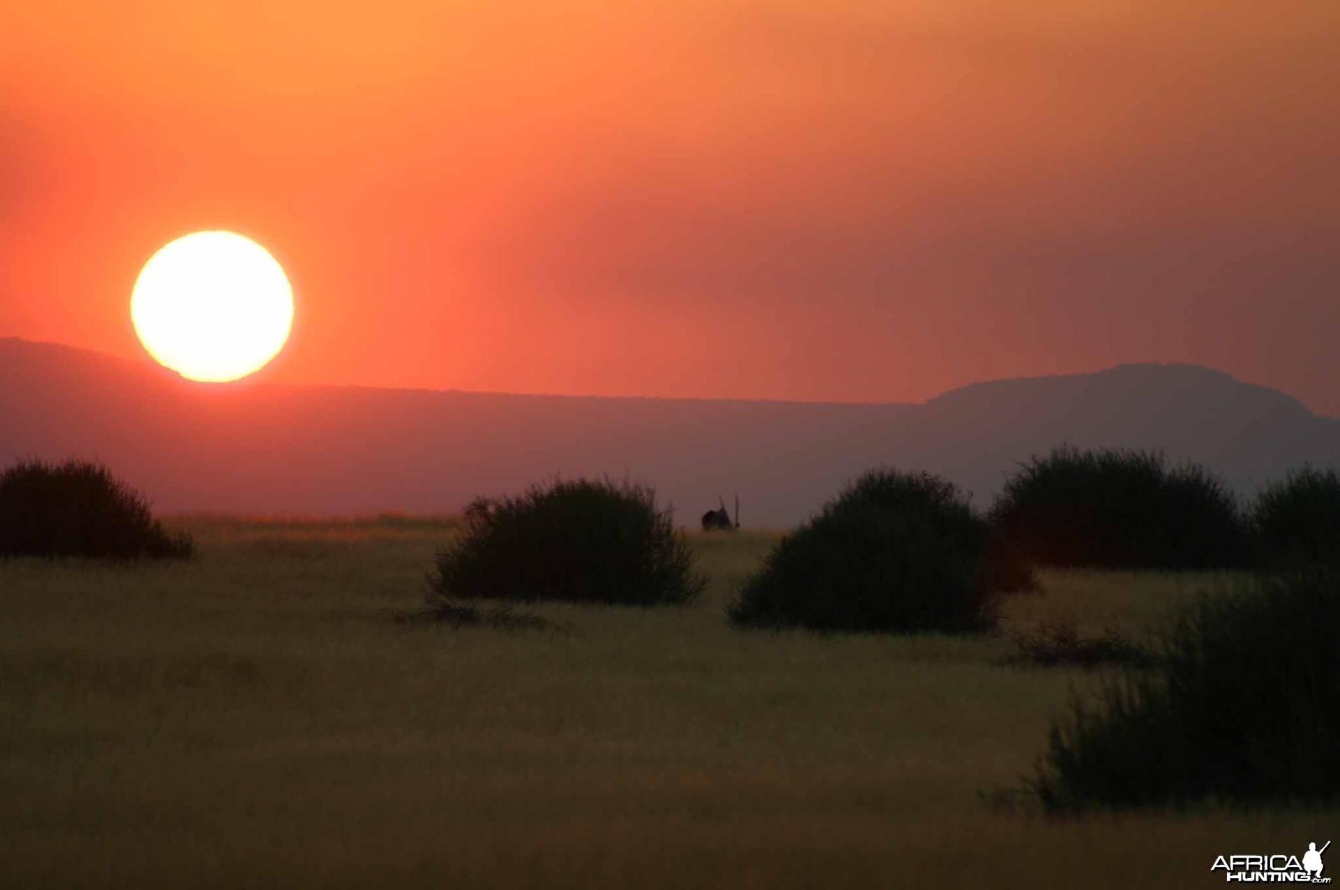 Palmwag Sunrise