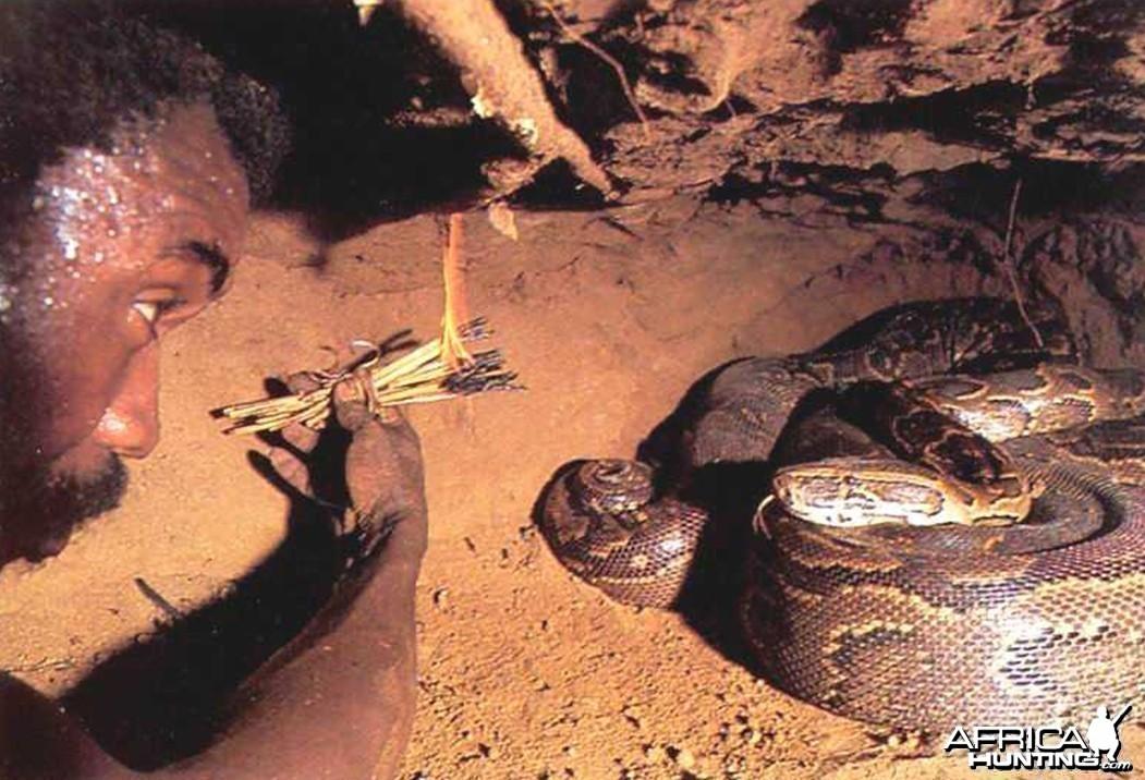 Snake Hunt 3