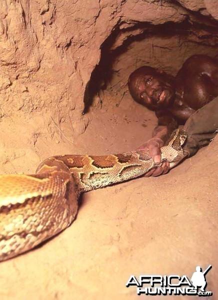 Snake Hunt 5