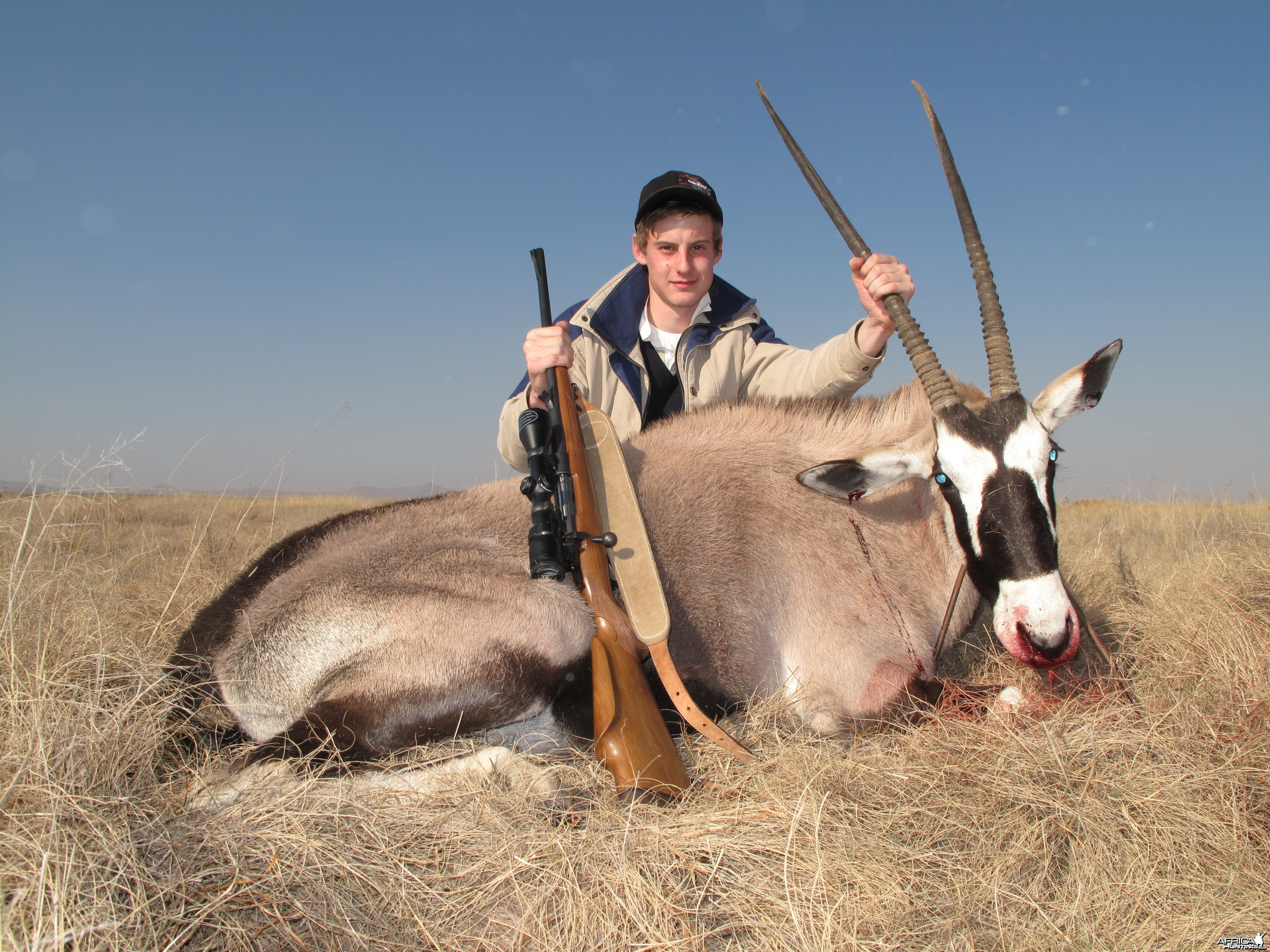 "Hunting with Clients, 37"" Oryx"