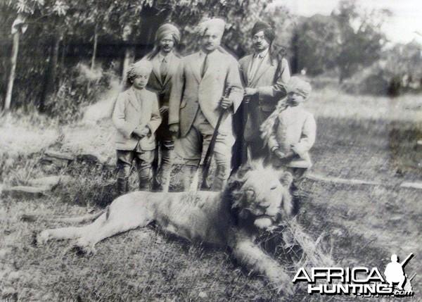 Asiatic Lion Hunt