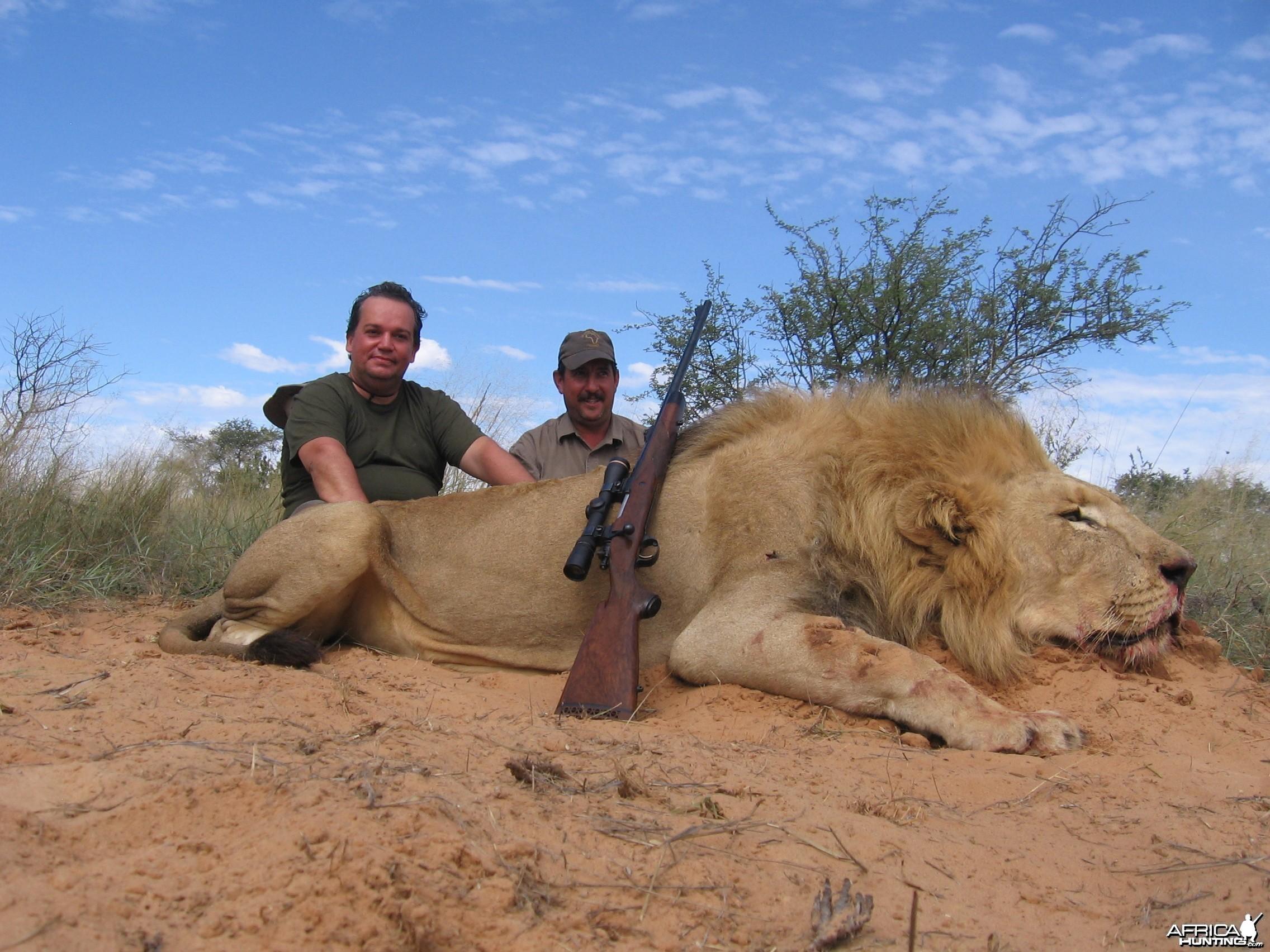 Danilo's Lion