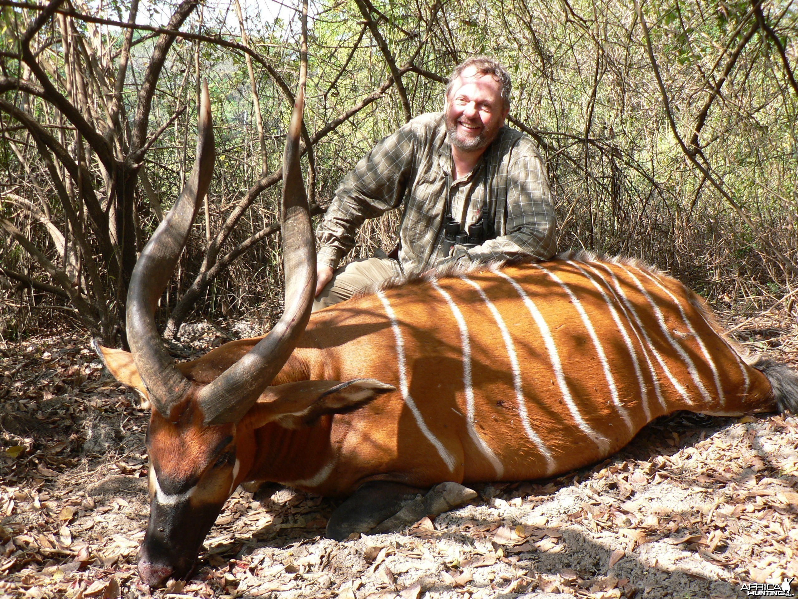 Hunt Bongo in Central African Republic