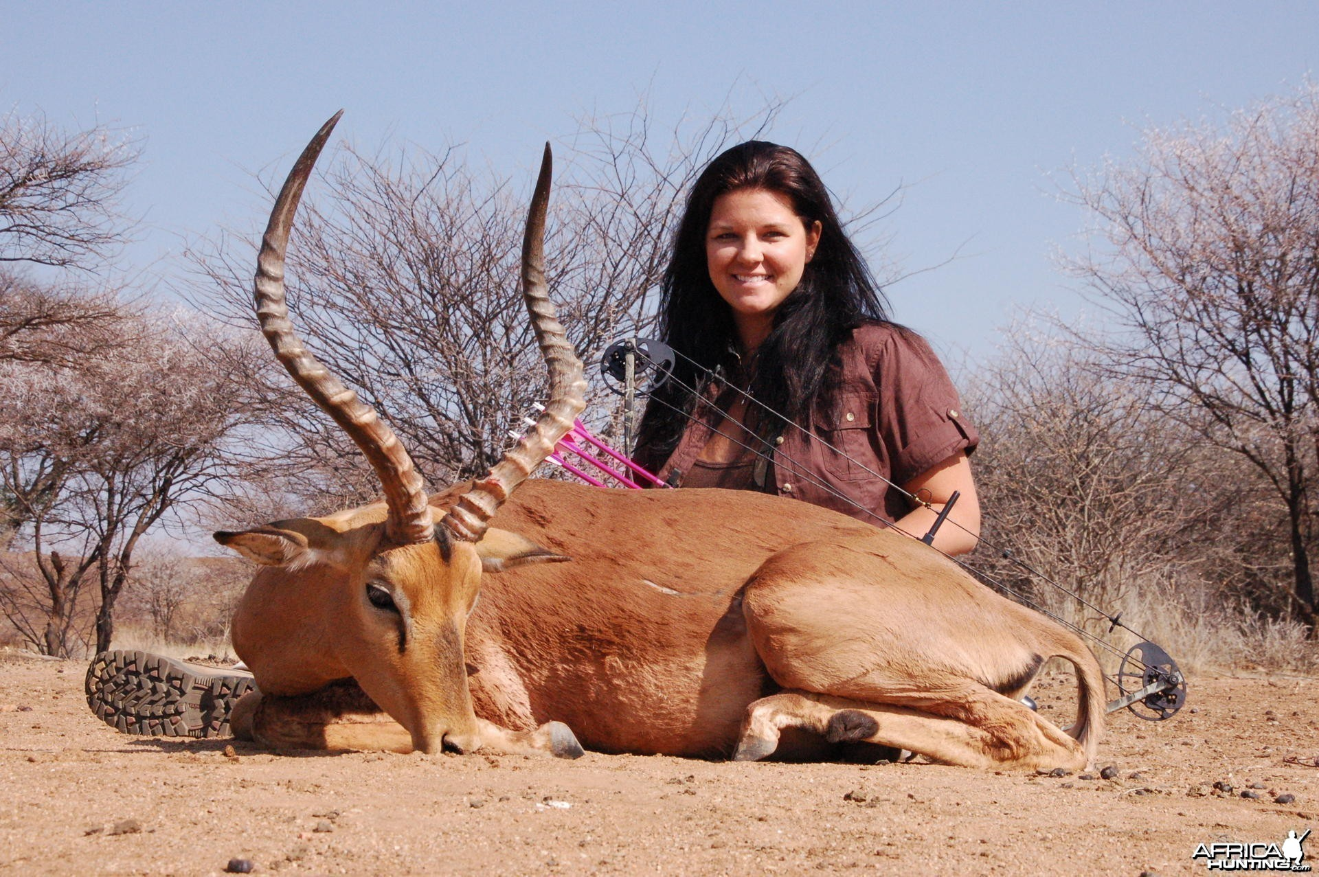 Impala bow hunted in Namibia