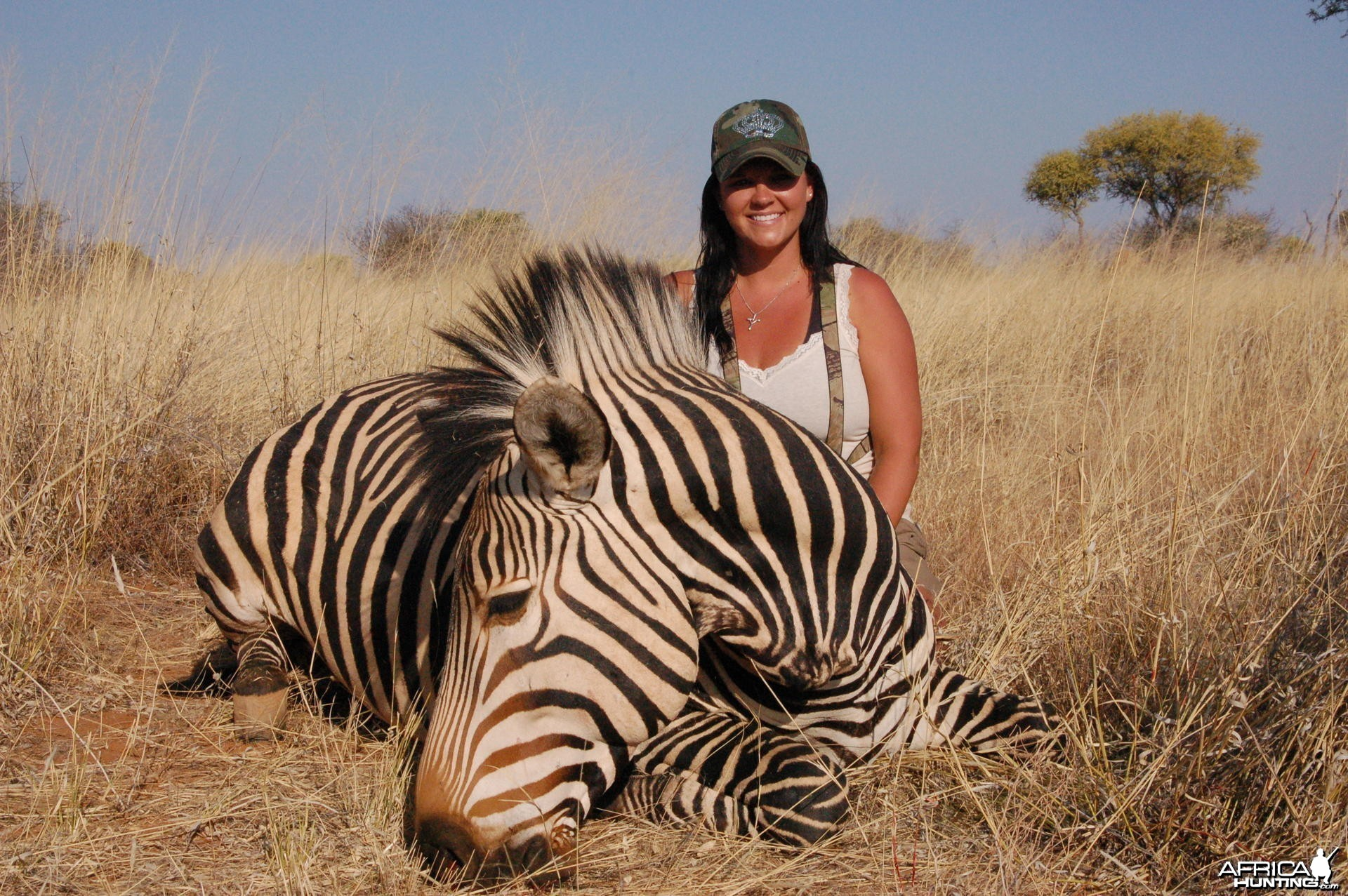 Hartmann's Mountain Zebra hunted in Namibia