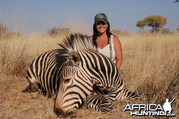 Hartmann's Mountain Zebra hunted in Namibia