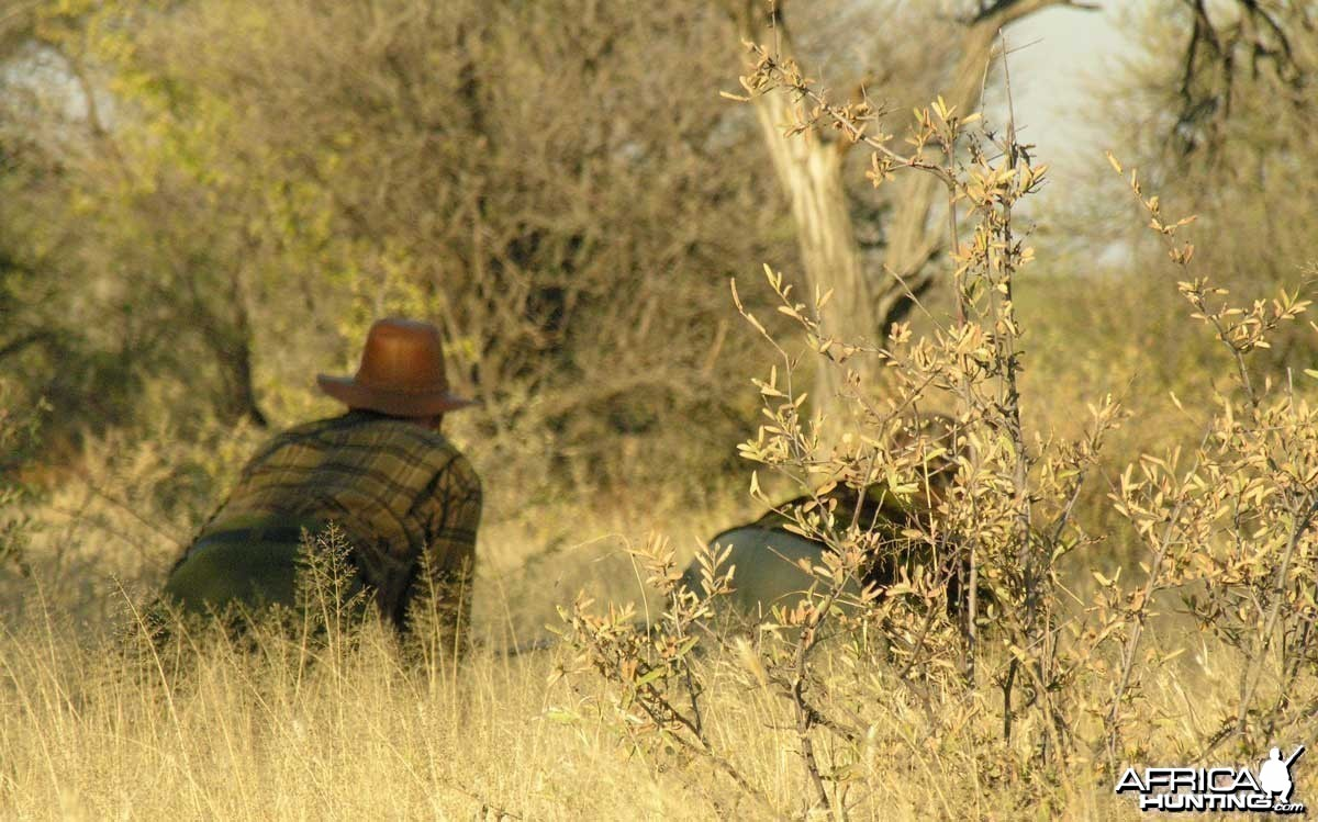 Stalking for a Red Hartebeast, Namibia