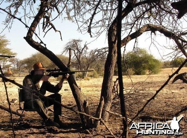 Aiming at a Warthog, Namibia