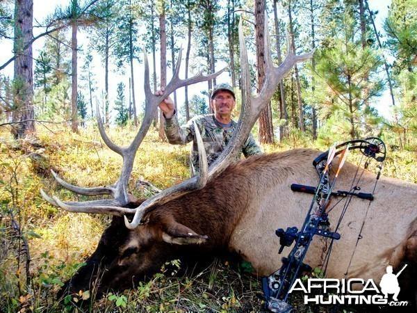 Wyoming Archery Elk