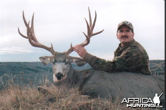 Mule Deer Hunt Alberta Canada