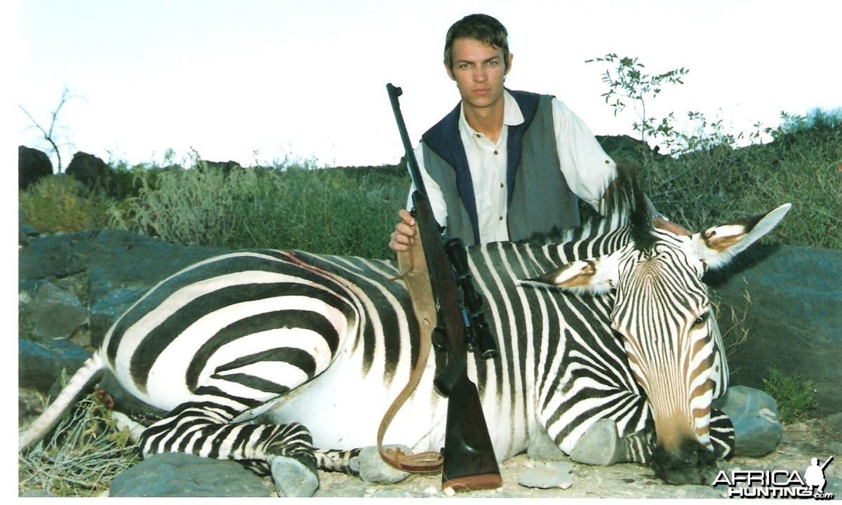 Hartman Zebra Mare