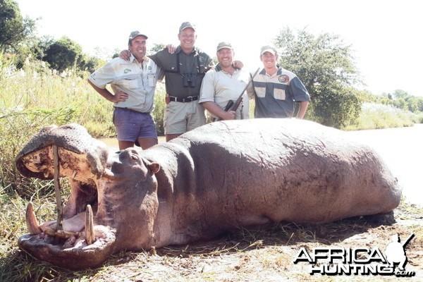 Top 10 Hippo hunt in Zimbabwe