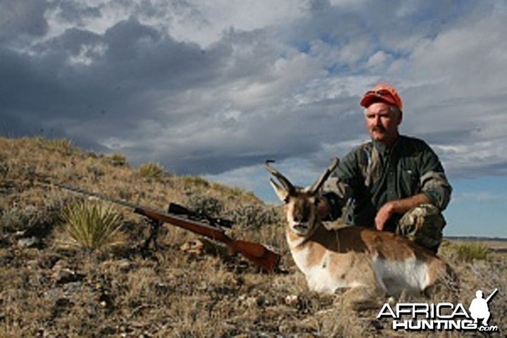 Pronghorn hunt USA