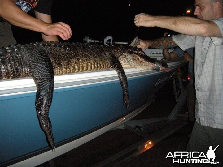 My gator fishing excursion in Louisiana