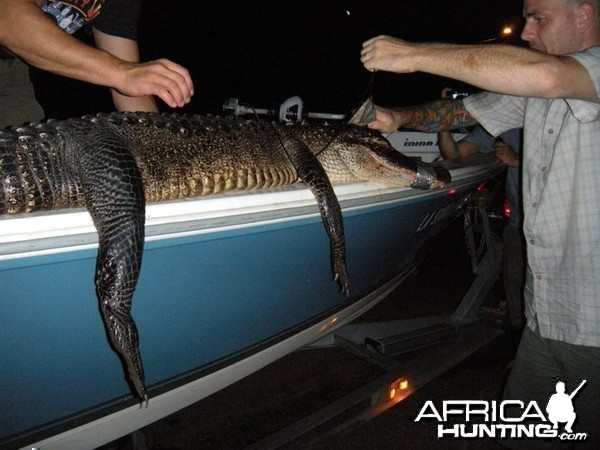 My gator fishing excursion in Louisiana