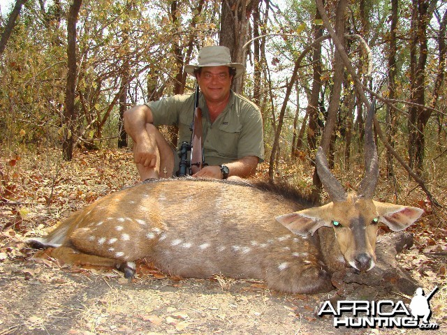 An old Zim Bush Buck unlucky not to die of old age