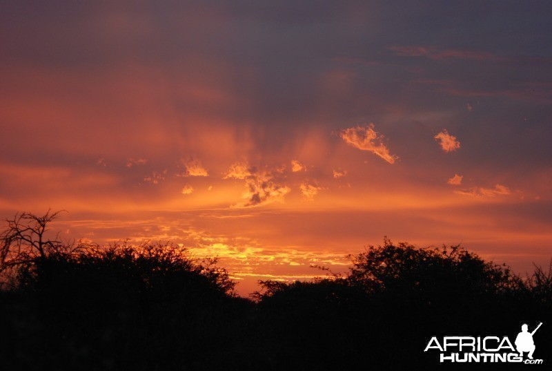 Limpopo Sunset