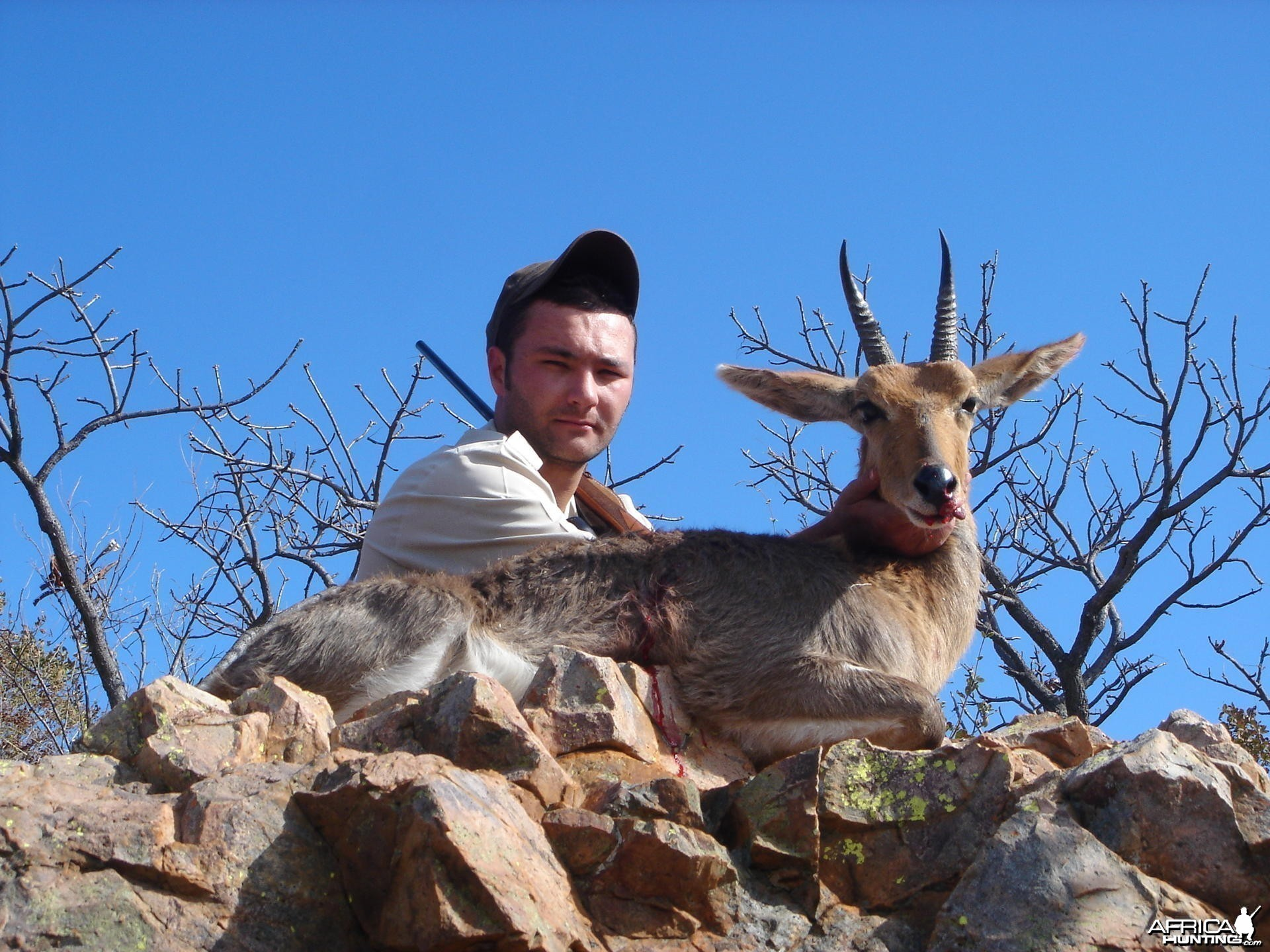 Mountain Reedbuck hunt