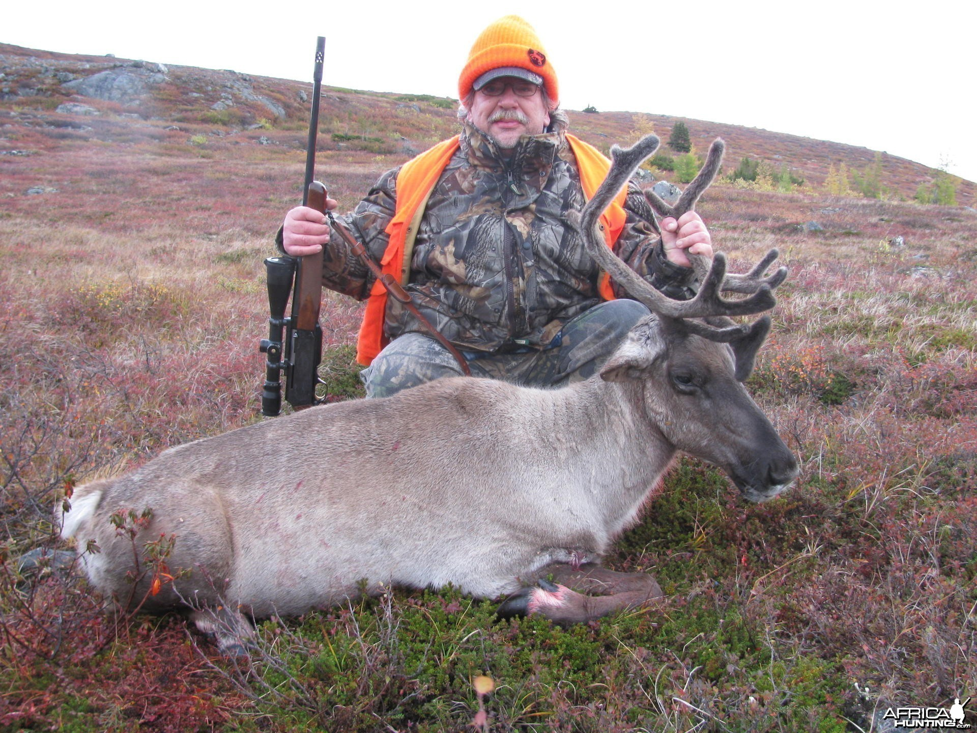 Northern Quebec Caribou Hunting