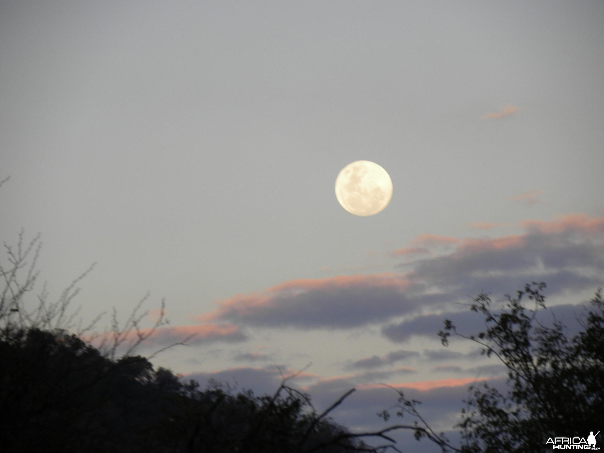 South African Moonrise