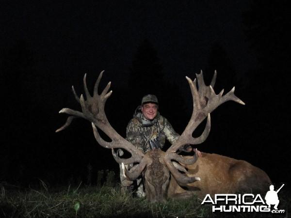Red Deer hunt