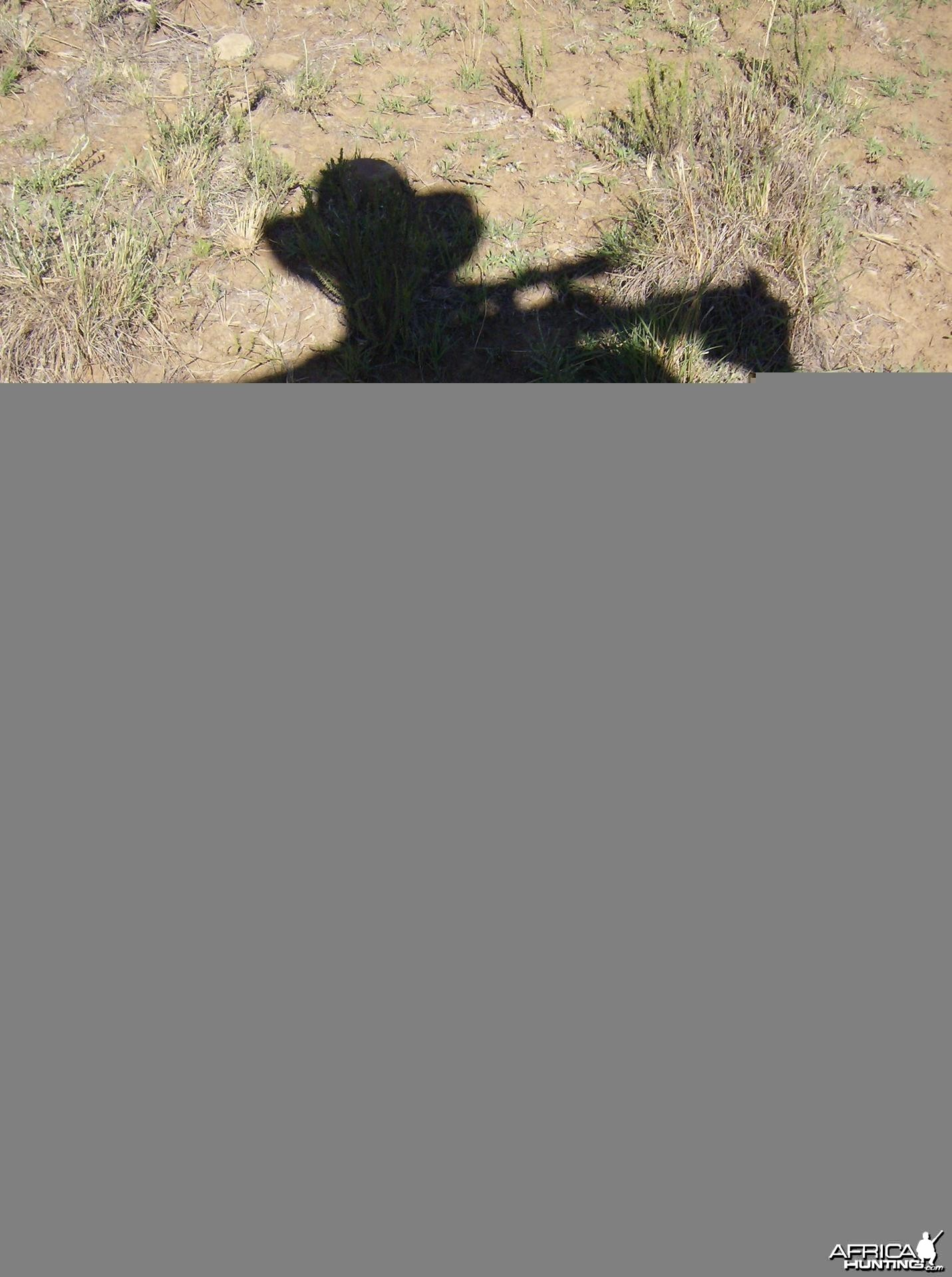South Africa shadow