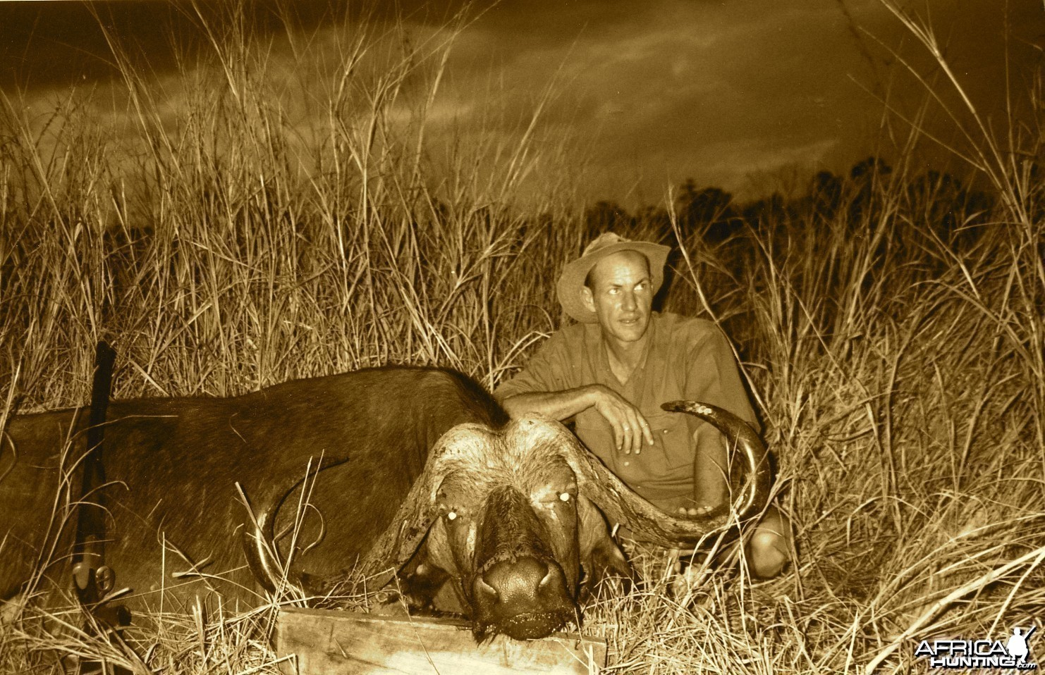 Hunting Buffalo in Tanzania