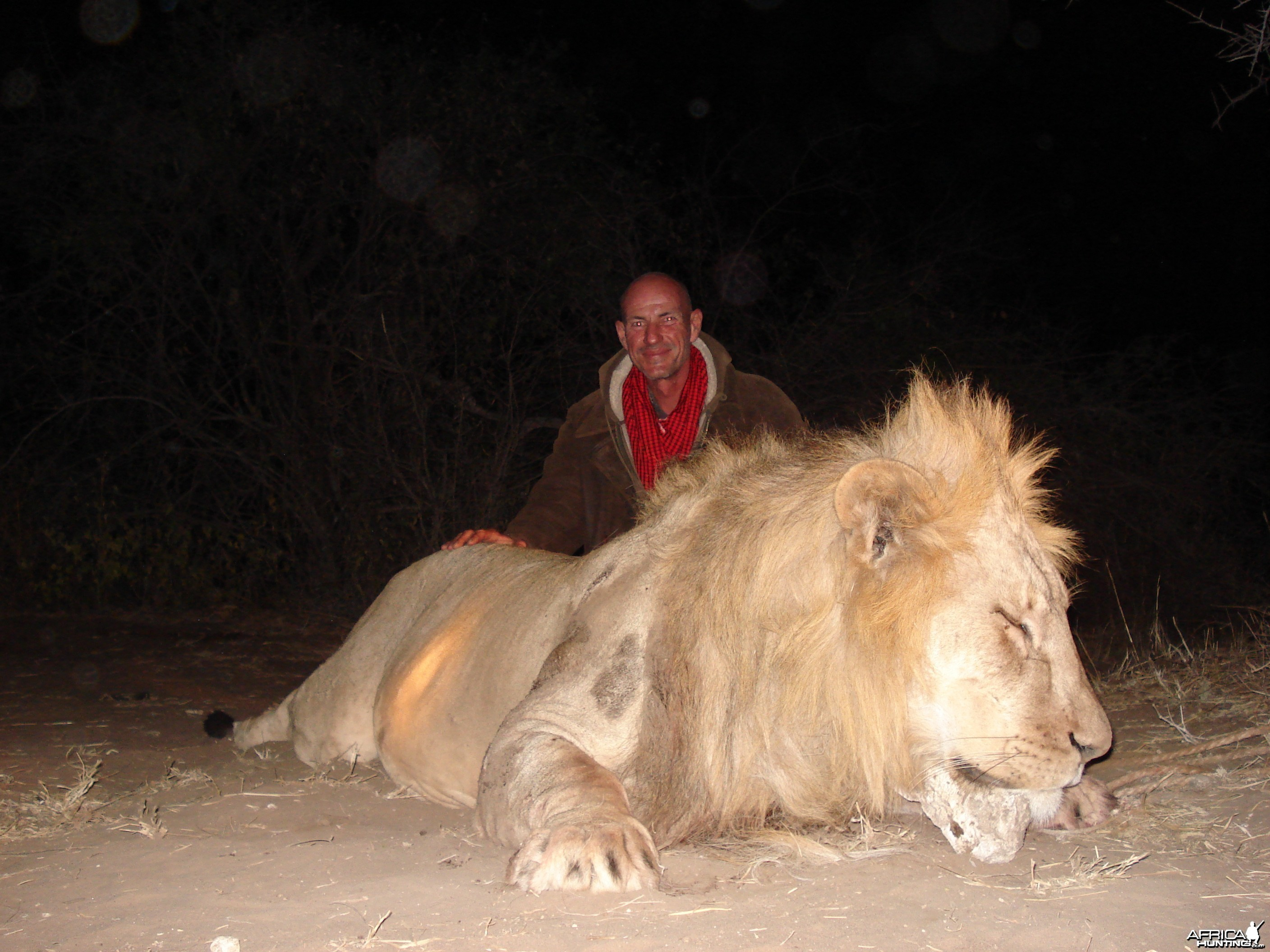 Hunting Lion in Tanzania