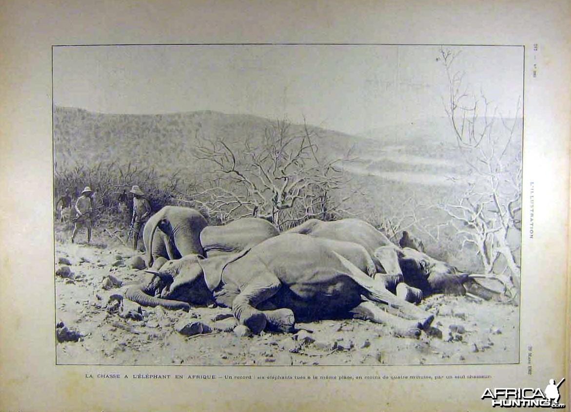 La chasse a L'Elephant en Afrique, 1902