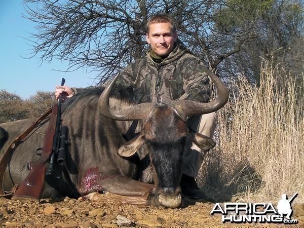 Blue Wildebeest hunt
