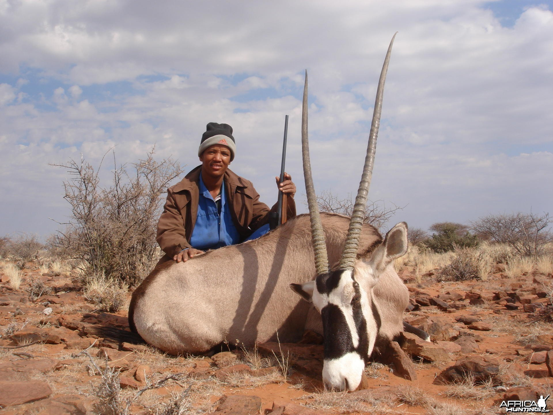 "43"" Gemsbuck cow taken in Southern Namibia"