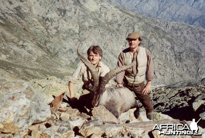Hunter and Writer J. Alain Smith Gredos Ibex