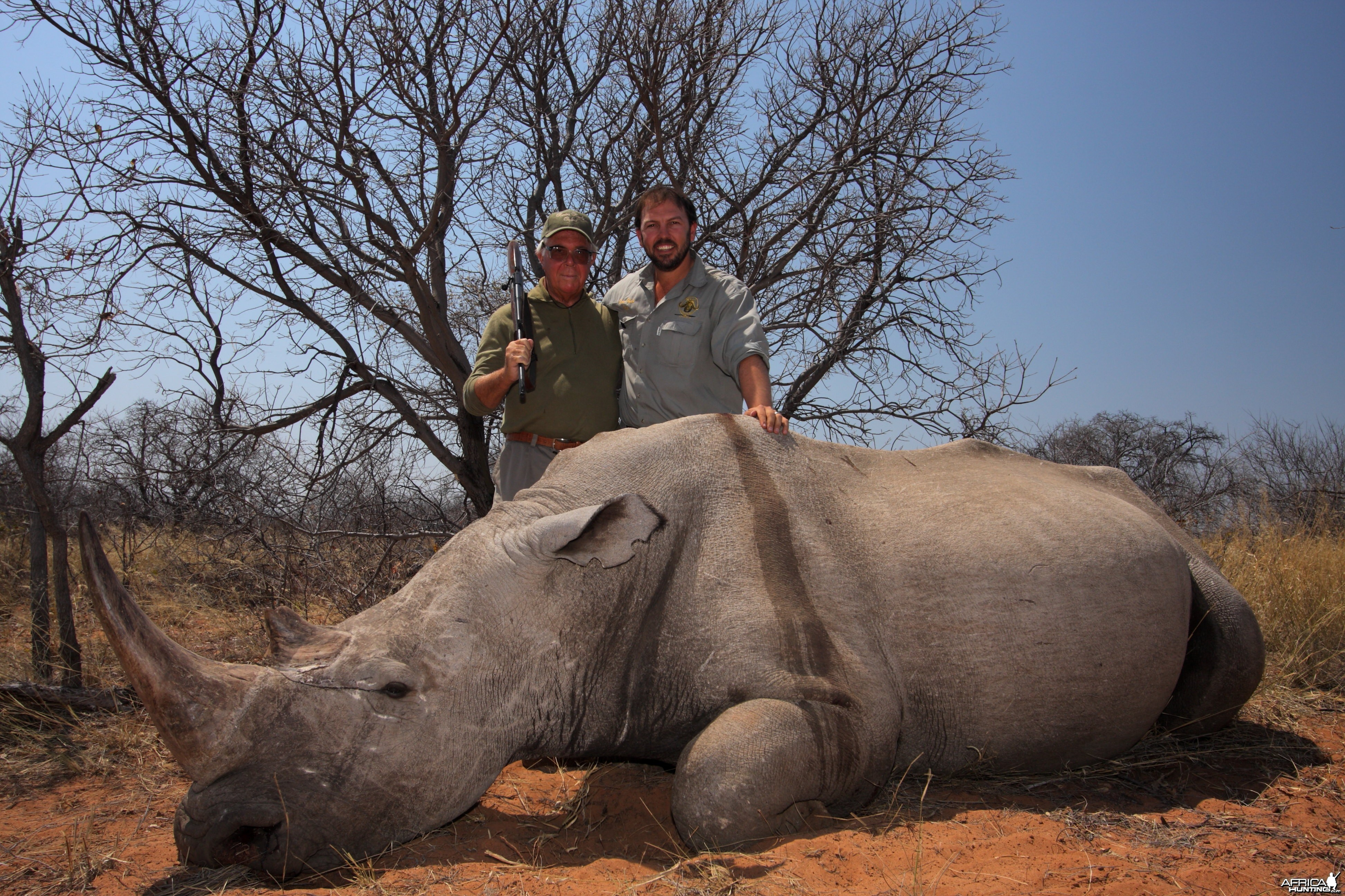 White Rhino hunted on the Waterberg Plateau in Namibia