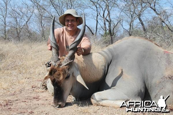 Eland hunted in Zimbabwe