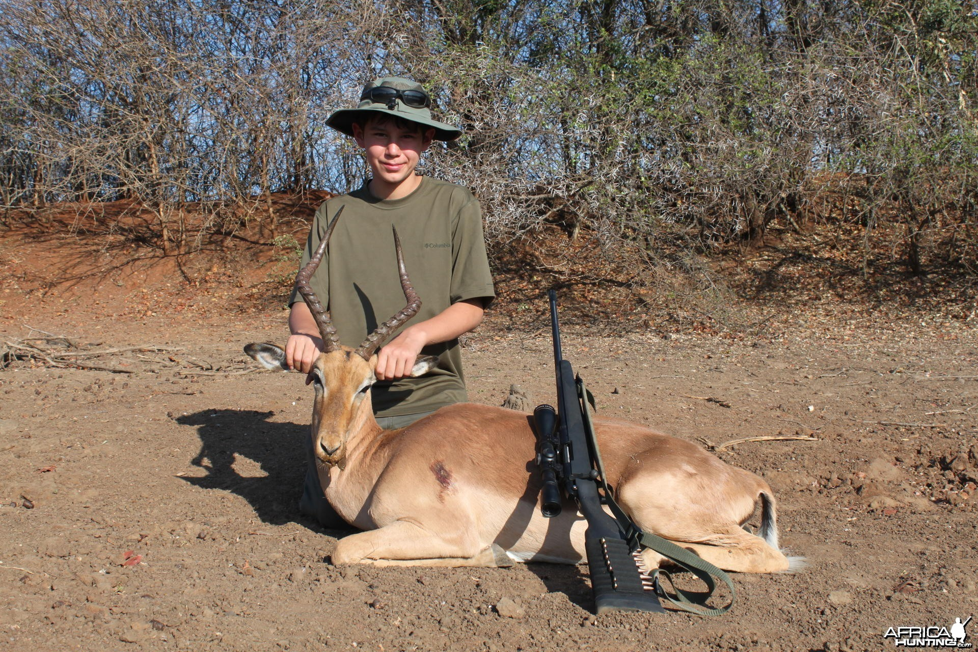 Impala hunted in Zimbabwe