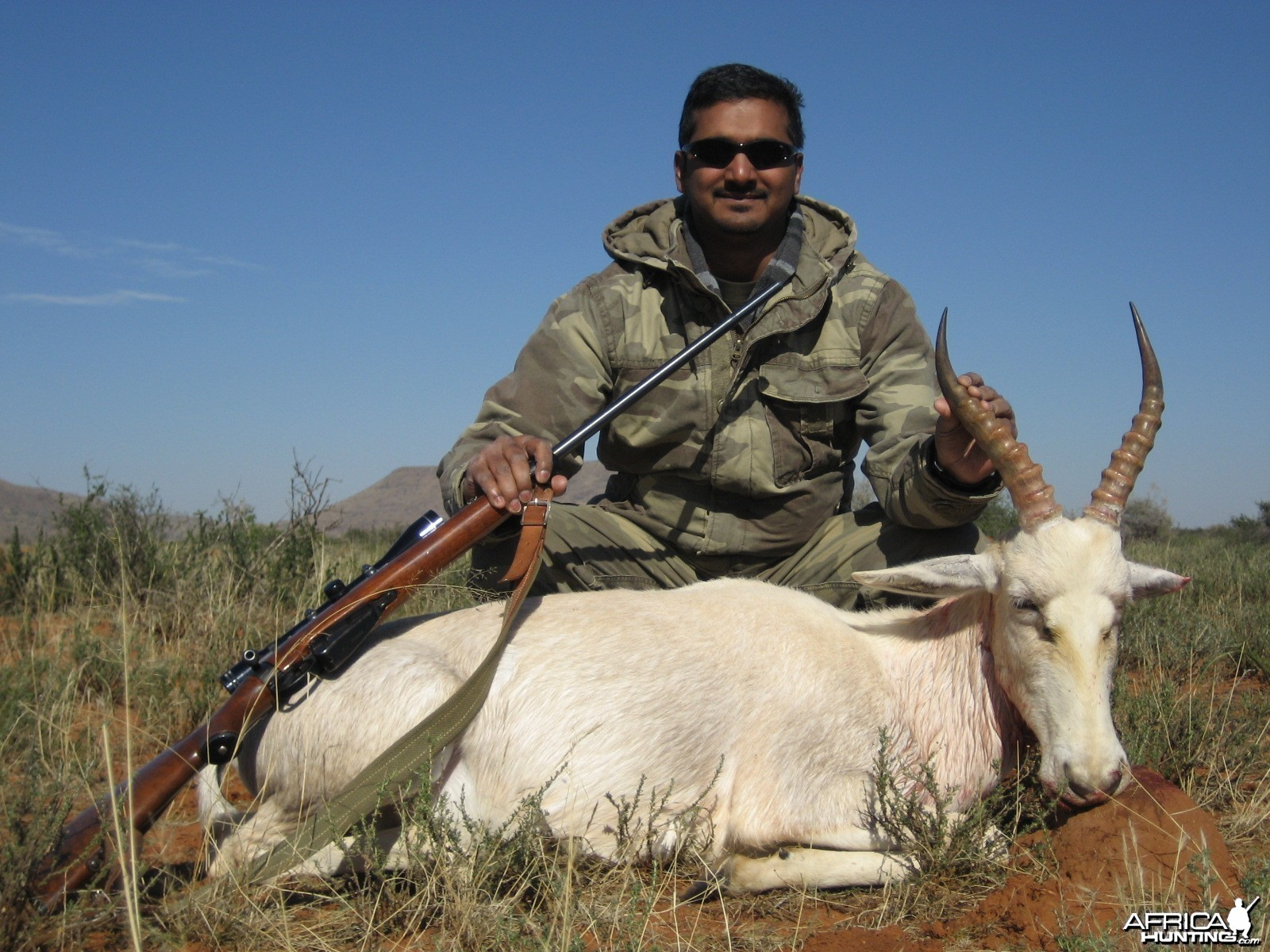 White Blesbok Northern Cape SA