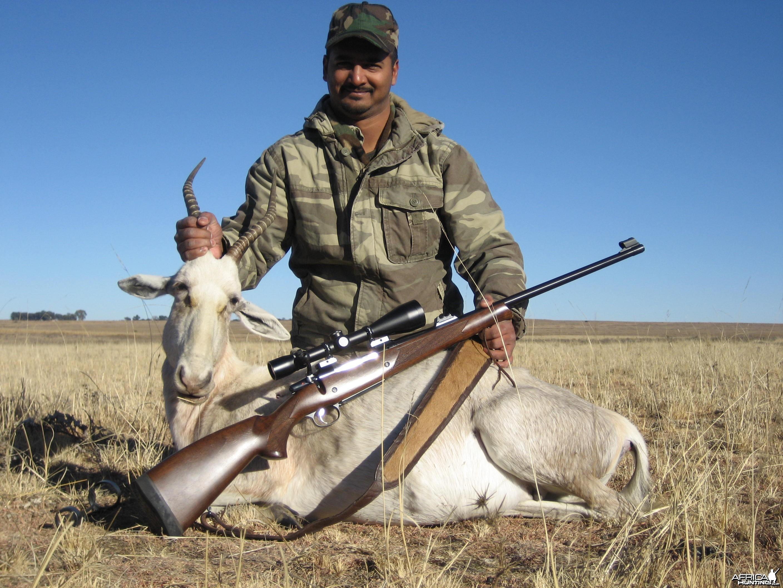 White Blesbok Vrede SA