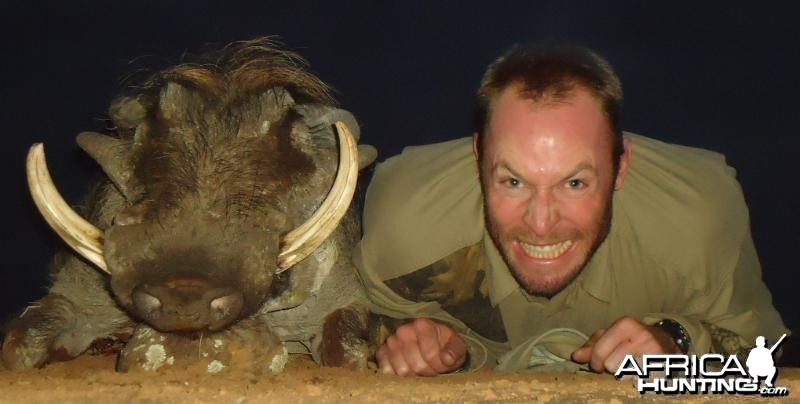 Warthog hunted in Zimbabwe