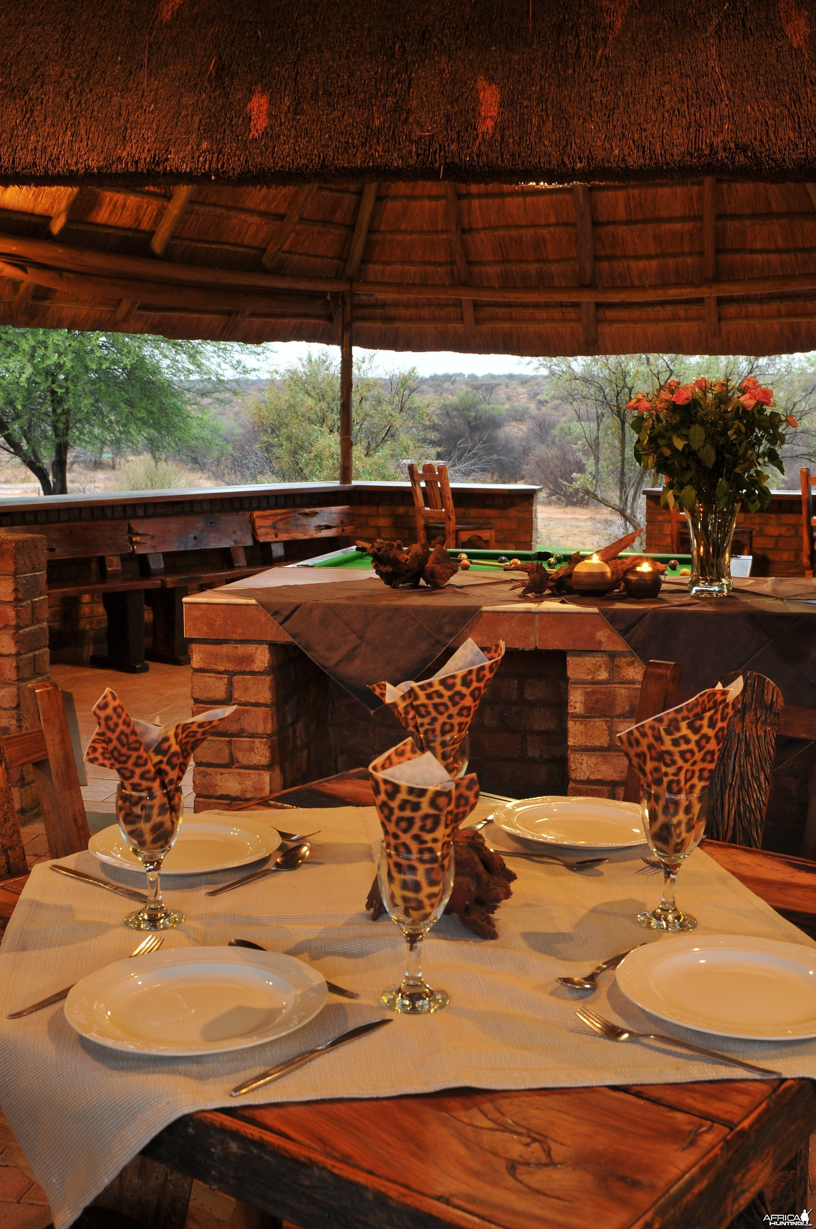 Dinner under the African Sky!