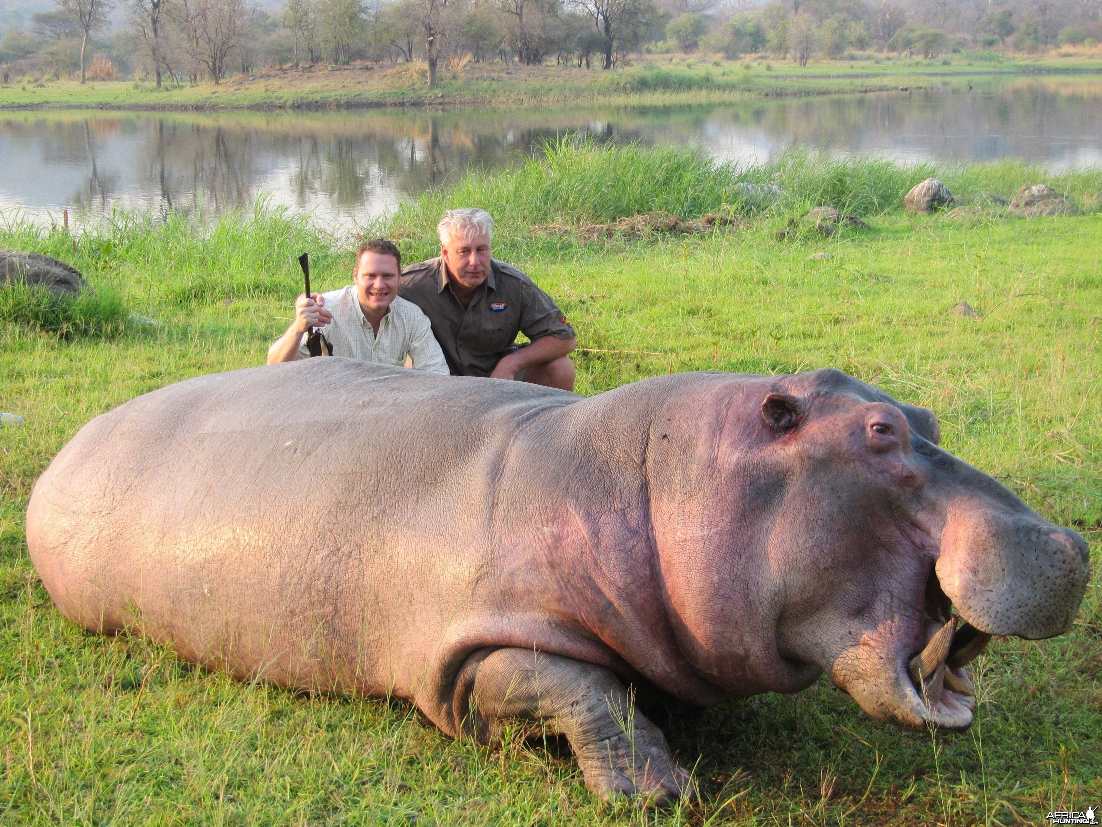 Hunting Hippo in Mozambique
