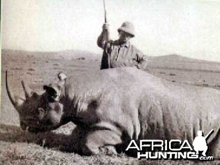 Hunting Black Rhino