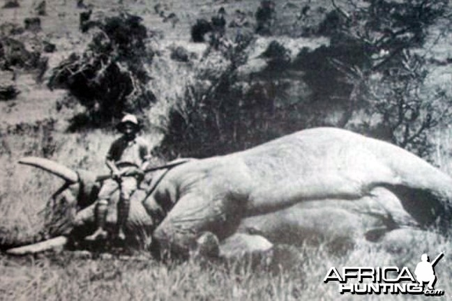 Africa Big Game Hunting Selous Karamojo Bell