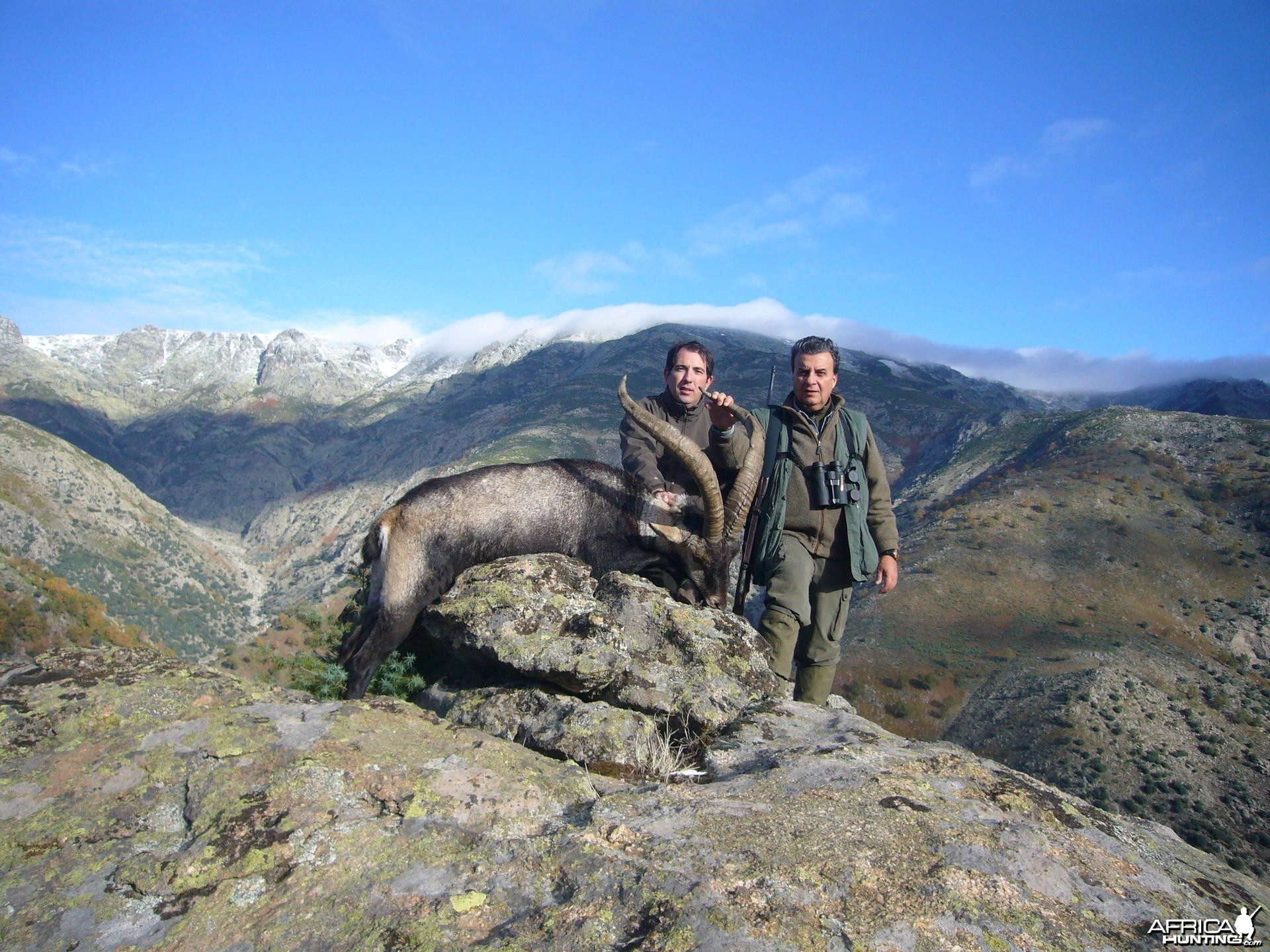 Hunting Gredos Ibex in Spain