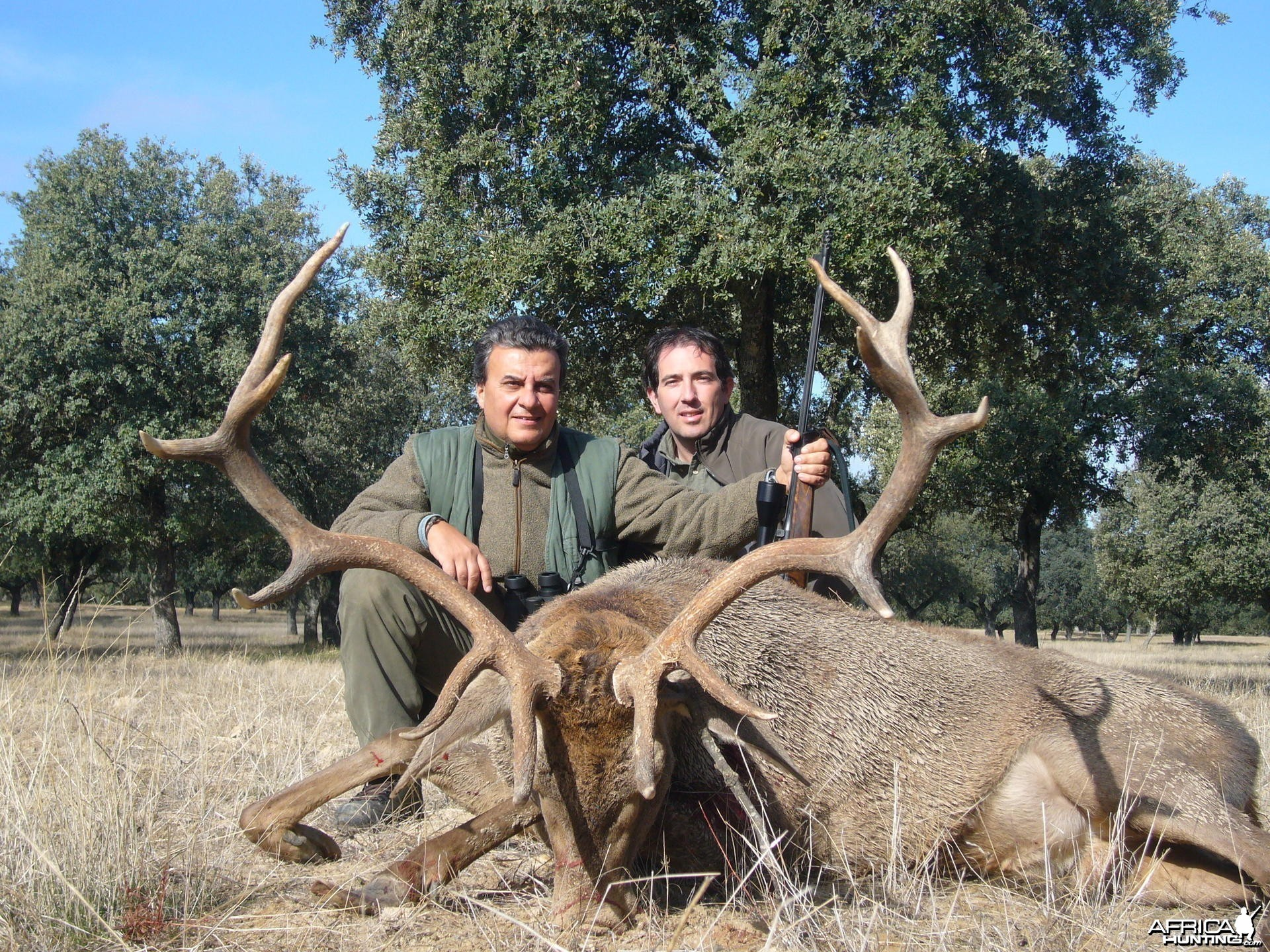 Hunting Red Deer in Spain
