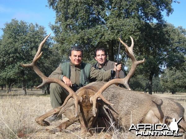 Hunting Red Deer in Spain